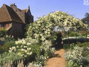 The White Garden at Sissinghurst, Kent