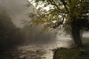 Early Morning Mist, Beddgelert, Wales (deryckdillon.co.uk)