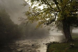 Early Morning Mist, Beddgelert, Wales (deryckdillon.co.uk)