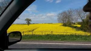 View of  fields on the journey from Wariwck to Stratford upon Avon