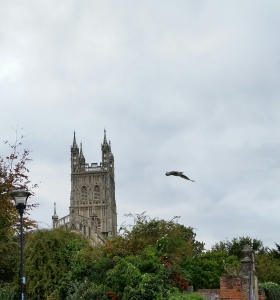 Bird flies past Gloucester Cathedral