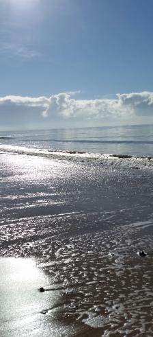 silver sea image 5