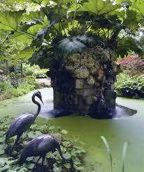 highgrove-garden-view-of-the-pond-and-gunnera