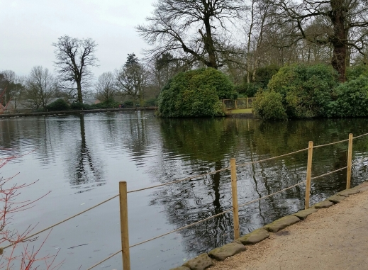 Lake at Dunham Massey, National Trust 19 Feb 2018