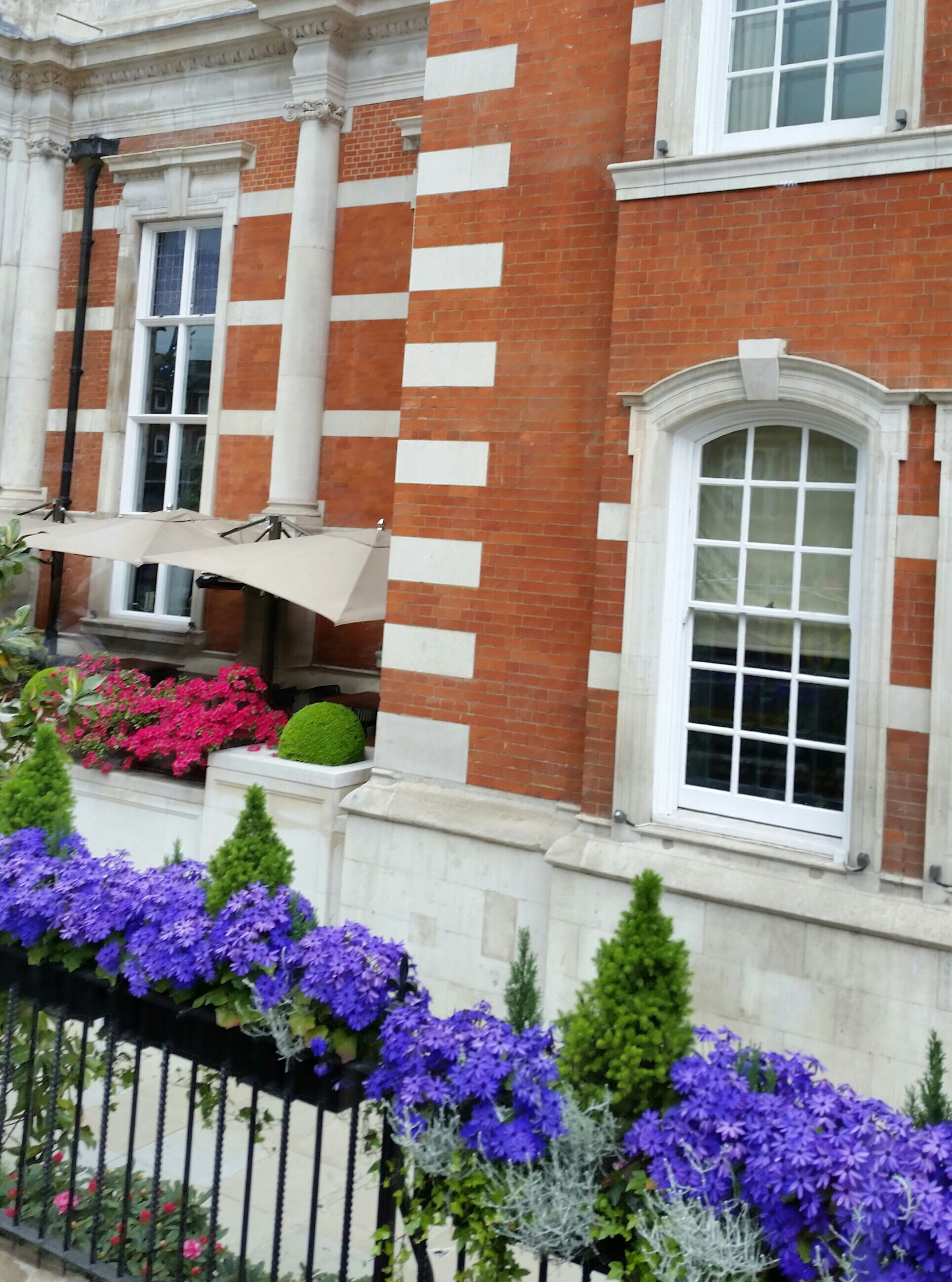 Window boxes on railings outside London residence