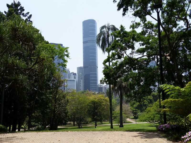 City lookout from Brisbane City Botanic Gardens