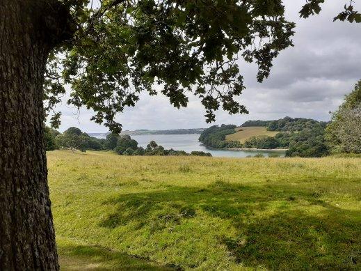 View Trellisick to Fal Estuary Cornwall SC Skillman