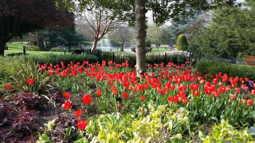 Jephson Gardens Leamington Spa photo credit Sheila Robinson Paranormal Warwickshire SC Skillman